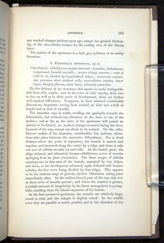 Image of Darwin-F272-1844-00165
