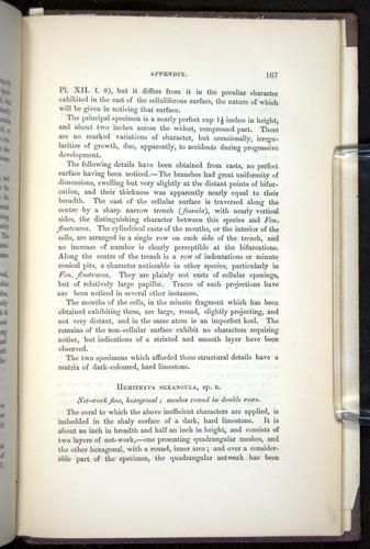 Image of Darwin-F272-1844-00167