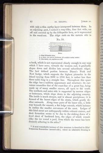 Image of Darwin-F272-1844-0082