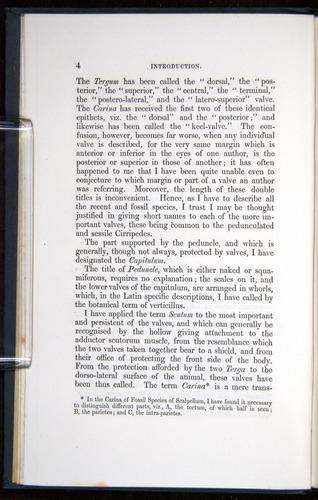 Image of Darwin-F339.1-1851-004