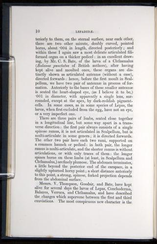 Image of Darwin-F339.1-1851-010