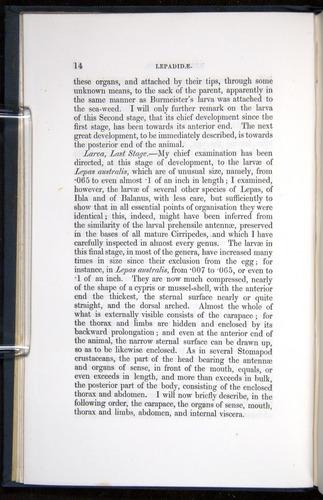 Image of Darwin-F339.1-1851-014