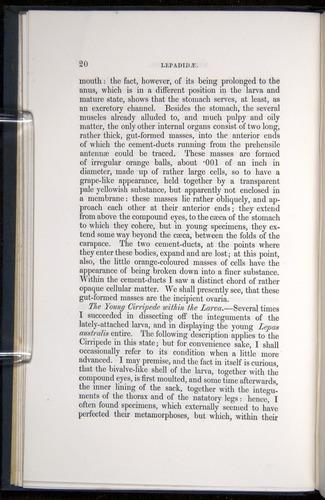 Image of Darwin-F339.1-1851-020