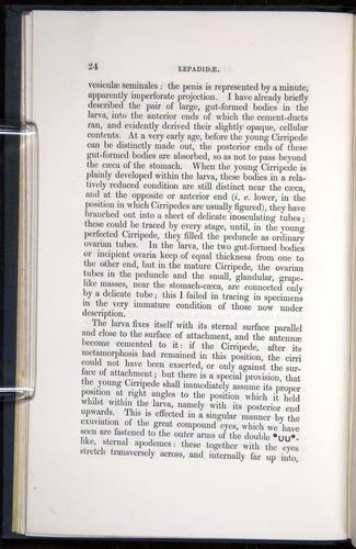 Image of Darwin-F339.1-1851-024