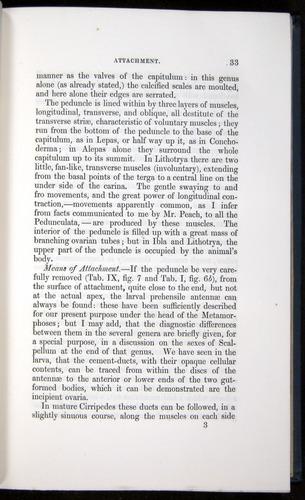 Image of Darwin-F339.1-1851-033