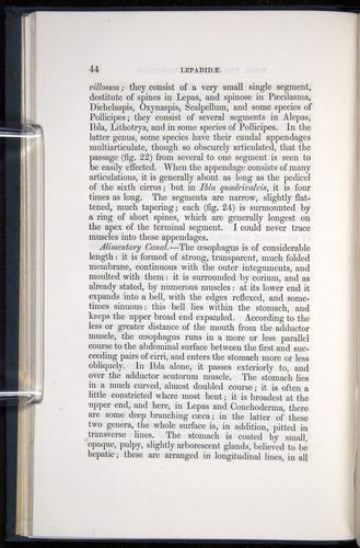 Image of Darwin-F339.1-1851-044