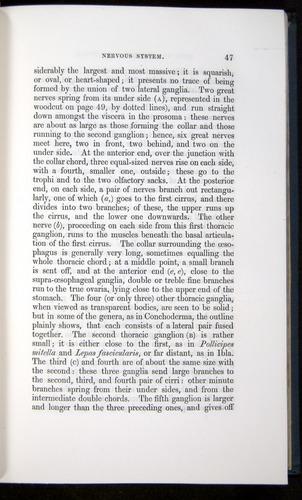 Image of Darwin-F339.1-1851-047