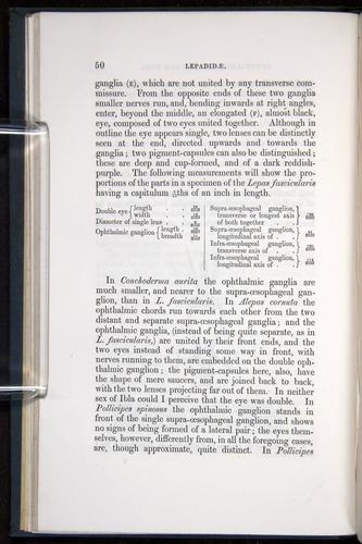 Image of Darwin-F339.1-1851-050