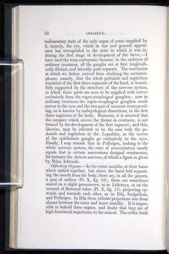 Image of Darwin-F339.1-1851-052