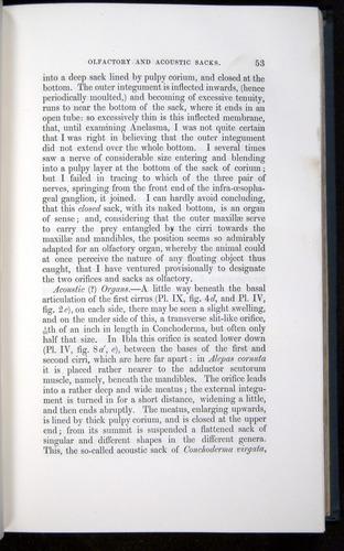 Image of Darwin-F339.1-1851-053