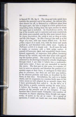 Image of Darwin-F339.1-1851-054