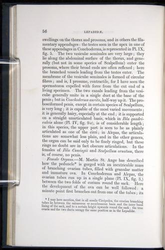 Image of Darwin-F339.1-1851-056