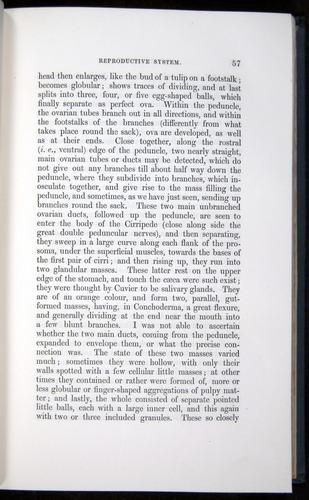 Image of Darwin-F339.1-1851-057