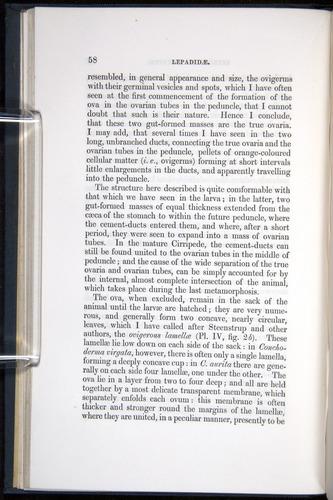 Image of Darwin-F339.1-1851-058