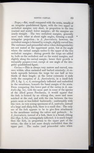 Image of Darwin-F339.1-1851-069