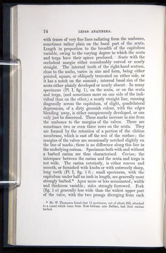Image of Darwin-F339.1-1851-074