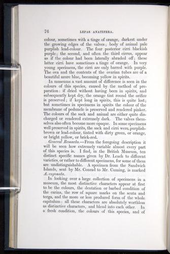 Image of Darwin-F339.1-1851-076