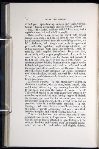 Image of Darwin-F339.1-1851-084