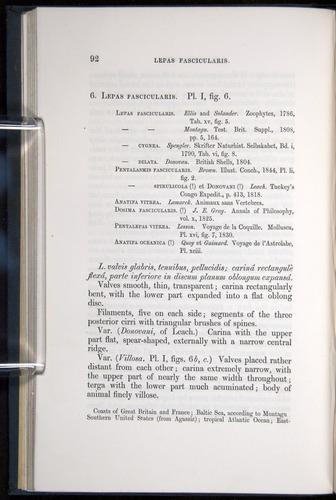 Image of Darwin-F339.1-1851-092