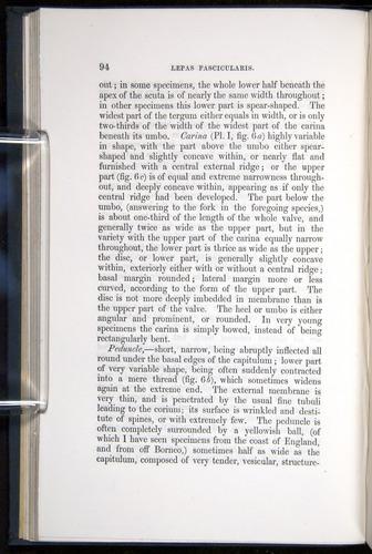 Image of Darwin-F339.1-1851-094