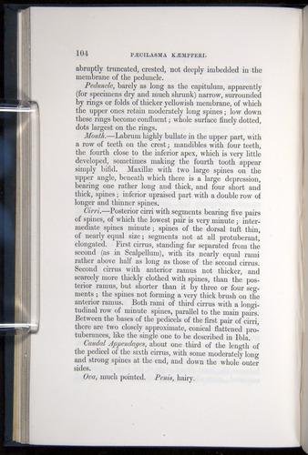 Image of Darwin-F339.1-1851-104