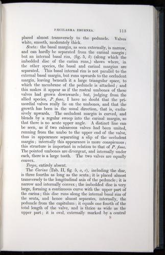 Image of Darwin-F339.1-1851-113