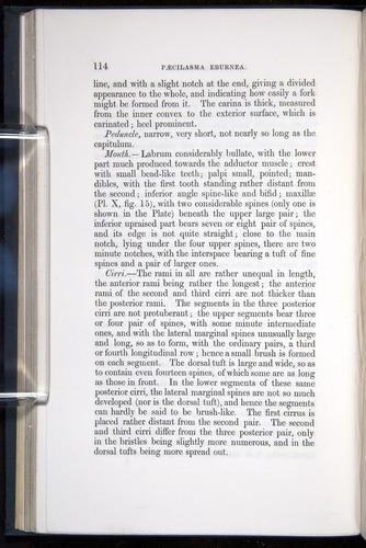 Image of Darwin-F339.1-1851-114