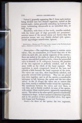 Image of Darwin-F339.1-1851-116