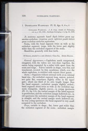 Image of Darwin-F339.1-1851-120