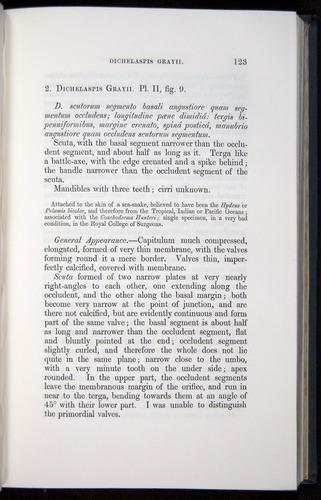 Image of Darwin-F339.1-1851-123