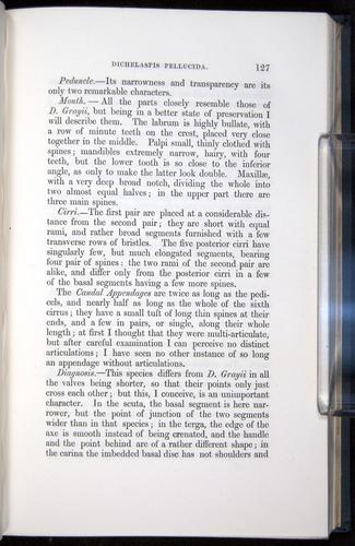 Image of Darwin-F339.1-1851-127