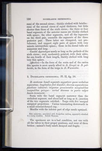 Image of Darwin-F339.1-1851-130