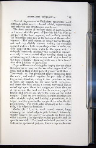 Image of Darwin-F339.1-1851-131