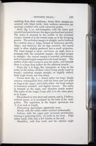 Image of Darwin-F339.1-1851-135