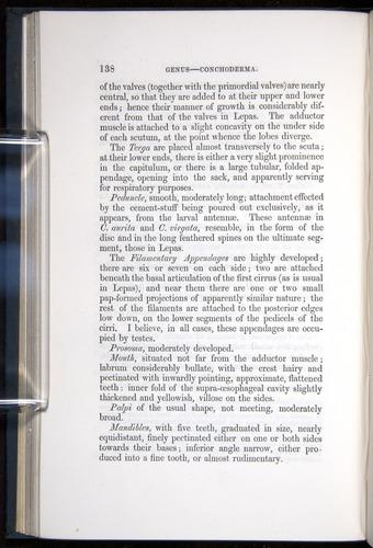 Image of Darwin-F339.1-1851-138