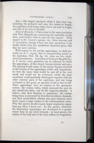 Image of Darwin-F339.1-1851-145