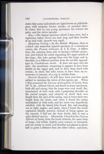 Image of Darwin-F339.1-1851-150