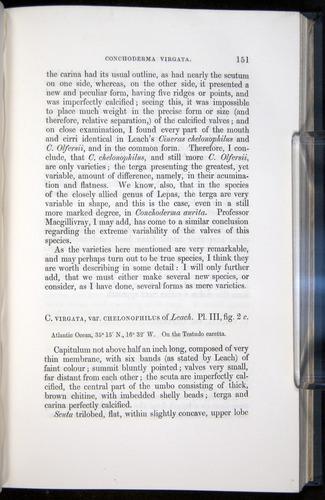 Image of Darwin-F339.1-1851-151