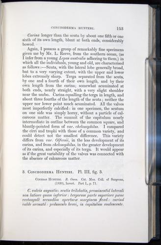 Image of Darwin-F339.1-1851-153
