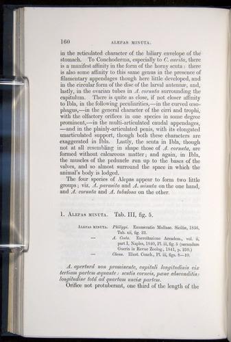 Image of Darwin-F339.1-1851-160
