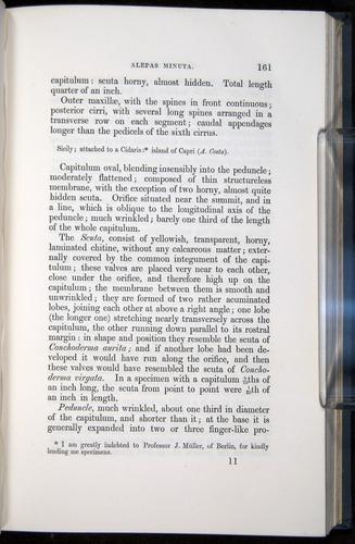 Image of Darwin-F339.1-1851-161