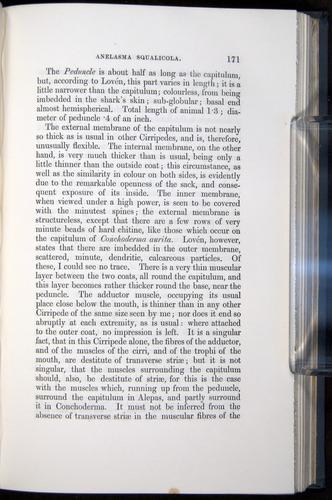 Image of Darwin-F339.1-1851-171
