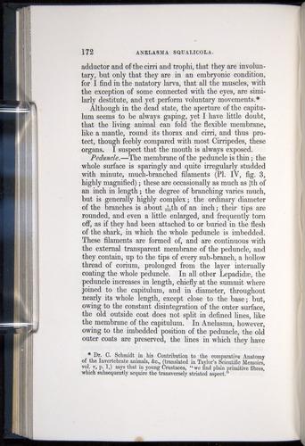 Image of Darwin-F339.1-1851-172