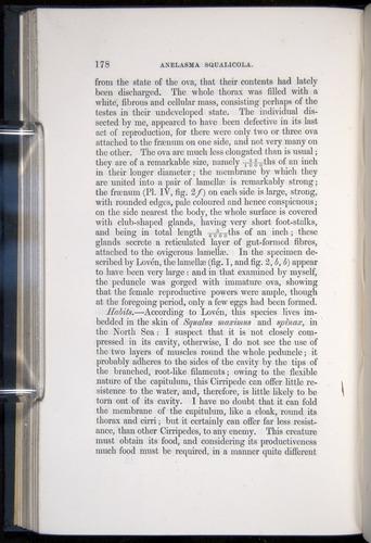 Image of Darwin-F339.1-1851-178