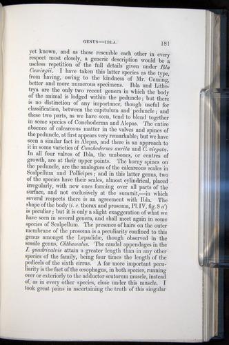 Image of Darwin-F339.1-1851-181