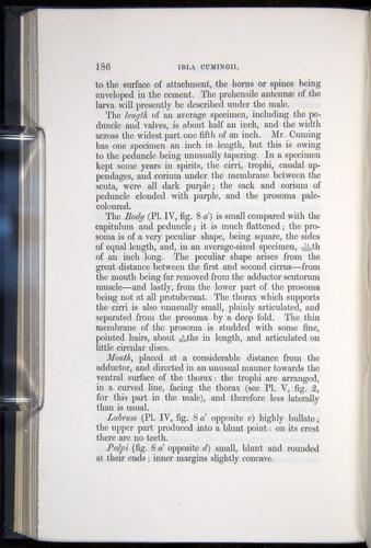 Image of Darwin-F339.1-1851-186