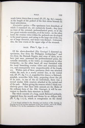 Image of Darwin-F339.1-1851-189