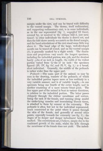 Image of Darwin-F339.1-1851-190