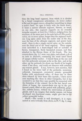 Image of Darwin-F339.1-1851-192