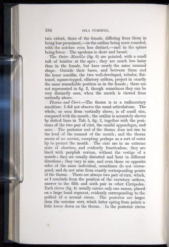 Image of Darwin-F339.1-1851-194